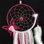 foto_tf_pink_butterfly03